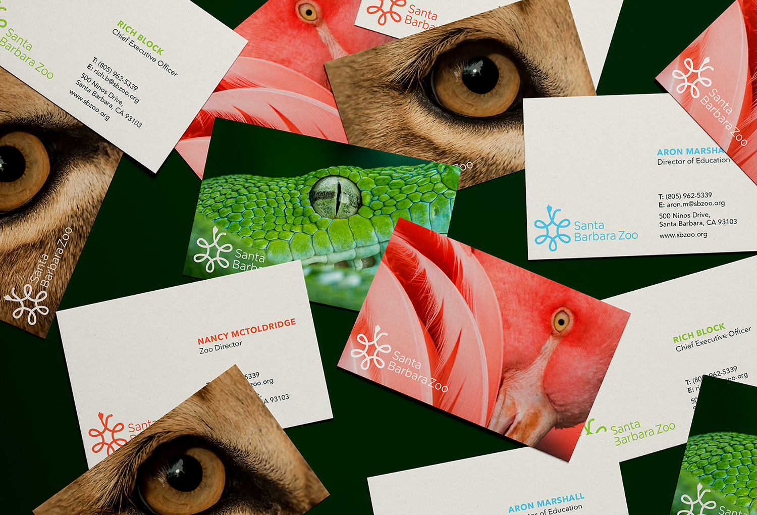 SB Zoo_Businesscard