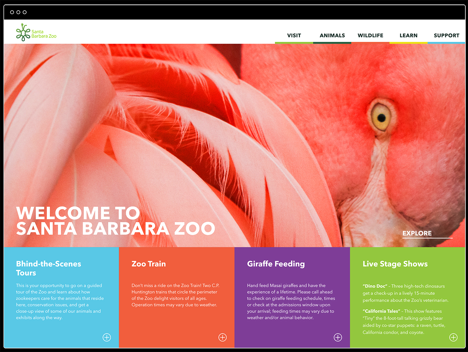 SB Zoo_Website_Home