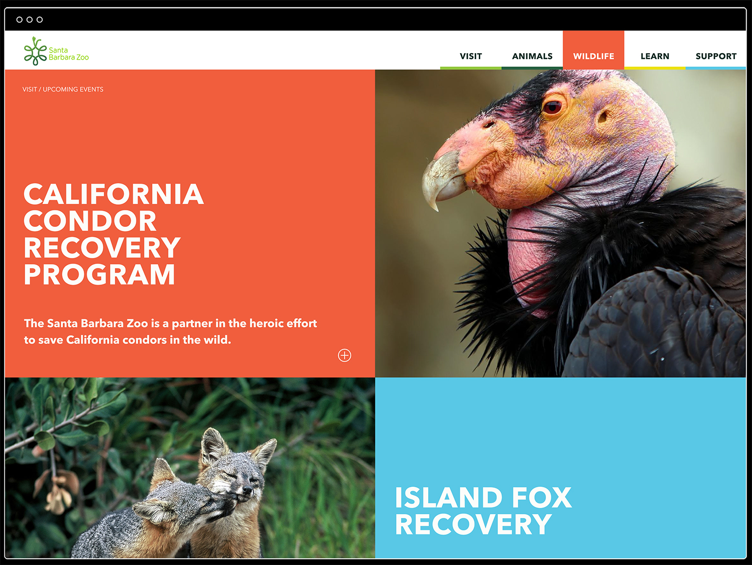 SB Zoo_Website_Wildlife